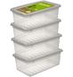 Aufbewahrungsbox »Bea«, BxHxL: 33 x 12 x 19,5 cm, Kunststoff-Thumbnail
