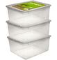 Aufbewahrungsbox »Bea«, BxHxL: 33,5 x 18 x 39 cm, Polypropylen (PP)-Thumbnail
