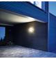 STEINEL Außenleuchte »LN 1 LED«, 4,5 W, warmweiß-Thumbnail