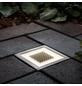 PAULMANN Außenleuchte »Outdoor Solar«, 0,24 W, warmweiß-Thumbnail