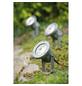 PAULMANN Außenleuchte »Special Line Garden Spot«, 28 W, dimmbar-Thumbnail