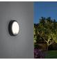 PAULMANN Außenwandleuchte »Outdoor «, 15 W, inkl. Bewegungsmelder, IP54, warmweiß-Thumbnail