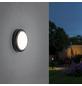 PAULMANN Außenwandleuchte »Outdoor «, 15 W, IP54, warmweiß-Thumbnail