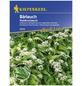 KIEPENKERL Bärlauch ursinum Allium-Thumbnail