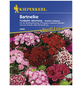 KIEPENKERL Bartnelke, Dianthus barbatus, Samen, Blüte: mehrfarbig-Thumbnail