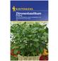 KIEPENKERL Basilikum basilicum Ocimum-Thumbnail
