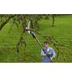 GARDENA Baumschere »Combisystem« mit Stiel, ausziehbar (Teleskop)-Thumbnail