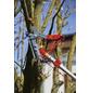 WOLF GARTEN Baumschere, Klingenlänge: 6,5 mm, Stahl-Thumbnail