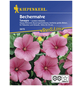 KIEPENKERL Bechermalve, Lavatera trimestris, Samen, Blüte: rosa-Thumbnail