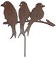 Beetstecker, Vogelgruppe, rostfarben, Metall-Thumbnail