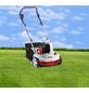 AL-KO Benzin-Vertikutierer, 1,3 kW, Arbeitsbreite: 38 cm-Thumbnail
