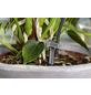 GARDENA Bewässerungssteuerung, Kunststoff-Thumbnail