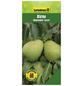GARTENKRONE Birne, Pyrus communis »Alexander Lucas«, Früchte: süß, zum Verzehr geeignet-Thumbnail