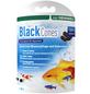 DENNERLE Black Cones - Erlenzapfen-Thumbnail