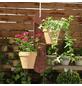 GardenGuard Blumenampel, BxT: 10 x 50 cm-Thumbnail