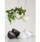 SCHEURICH Blumenampel »HANGING POT«, ØxH: 22 x 16,8 cm, weiß-Thumbnail