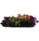 BLUMIXX Blumenbag Sommer 30 cm, Blüte: gemischt-Thumbnail