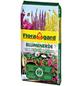 FLORAGARD Blumenerde, für Balkon-, Kübel-, Zimmerpflanzen-Thumbnail