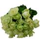 Blumenstrauß mit Rosen   in weiß, Ø 36–40 cm-Thumbnail