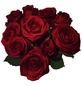 Blumenstrauß »Rose«, Ø 23 cm-Thumbnail