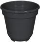GELI Blumentopf, Breite: 10 cm, anthrazit, Kunststoff-Thumbnail