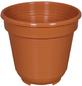 GELI Blumentopf, Breite: 10 cm, terracotta, Kunststoff-Thumbnail