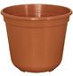 GELI Blumentopf, Breite: 18 cm, terracotta, Kunststoff-Thumbnail