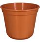 GELI Blumentopf, Breite: 24 cm, terracotta, Kunststoff-Thumbnail