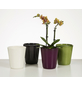 SCHEURICH Blumentopf »ORCHID«, Breite: 12,3 cm, grey, Keramik-Thumbnail