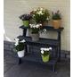 PROMADINO Blumentreppe, BxHxL: 78 x 62 x 55 cm, Kiefernholz-Thumbnail