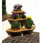 PROMADINO Blumentreppe, BxHxL: 87 x 62 x 59 cm, Kiefernholz-Thumbnail