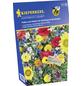 KIEPENKERL Blumenwiesensamen, Samen-Thumbnail