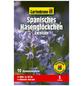 GARTENKRONE Blumenzwiebel »Gartenkrone Hyacinthoides his. Excelsior«-Thumbnail
