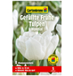 GARTENKRONE Blumenzwiebel »Gartenkrone Tulpe Mondial«-Thumbnail
