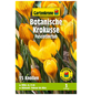 GARTENKRONE Blumenzwiebel »Gartenkrone Wildkrokusse Fuscotinctus«-Thumbnail