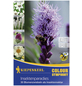 KIEPENKERL Blumenzwiebel Mischung, Mischung Mischung, Blütenfarbe: mehrfarbig-Thumbnail