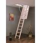 GO/ON! Bodentreppe »GO/ON«, max. Raumhöhe 280 cm, Fichtenholz, U-Wert 1,2 W/(m²K)-Thumbnail