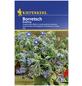 KIEPENKERL Boretsch officinalis Borago-Thumbnail
