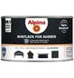 ALPINA Buntlack, grau , glänzend-Thumbnail
