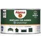 ALPINA Buntlack, grün, glänzend-Thumbnail