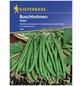 KIEPENKERL Buschbohne vulgaris var. nanus Phaseolus »Negra«-Thumbnail