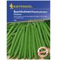 KIEPENKERL Buschbohne vulgaris var. nanus Phaseolus »Primavera«-Thumbnail