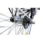 CHALLENGE Citybike Tiefeinsteiger, 28 Zoll, 1-Gang, Unisex-Thumbnail