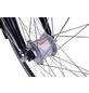 HAWK Citybike Tiefeinsteiger »Comfort Deluxe Plus«, 26 Zoll, 7-Gang, Unisex-Thumbnail