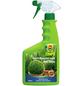 COMPO COMPO Buchsbaum- und Ilex-Grün 500 ml-Thumbnail