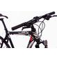 TRETWERK Crossbike »Arch 2.0«, 28 Zoll-Thumbnail