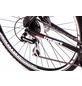TRETWERK Crossbike »Arch 2.0«, 28 Zoll, Herren-Thumbnail