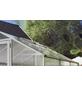 KGT Dachfenster »Tulpe«, BxHxt: 63 x 103 x 2 cm, Aluminium-Thumbnail