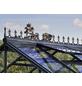 JULIANA Dachfirstverzierung für Gewächshäuser, BxHxt: 23 x 21 x 43 cm, Kunststoff-Thumbnail