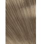 PARADOR Dekorpaneele »Style«, nussbaum, Holz, Stärke: 10 mm-Thumbnail